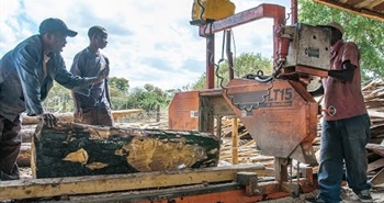 LT15 sawmill creates jobs & timber in Zambia