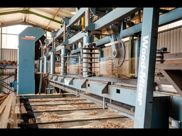 Wood-Mizer TITAN TVS at UCL Sawmill in South Africa