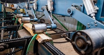 Wood-Mizer TITAN Optimising Edger in South Africa