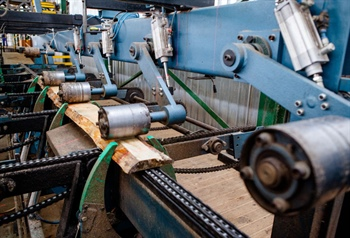 Wood-Mizer Titan rewrites the rulebook on optimising edgers