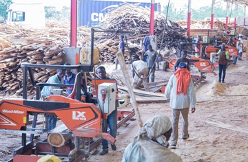 Ivorian timber processing company leads the way with Wood-Mizer