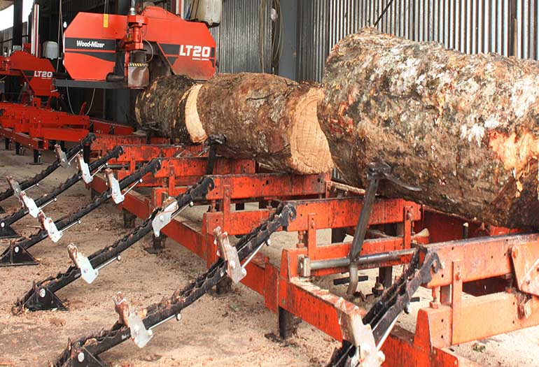 Wood Mizer Sawmill Line Unlocks Rubberwood Opportunity In